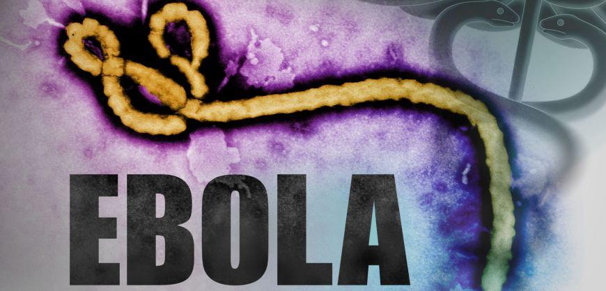 bola-trasmissione-del-virus-anche-dopo-la-guarigione-del-paziente