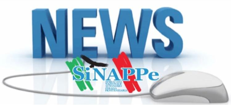news-sinappe